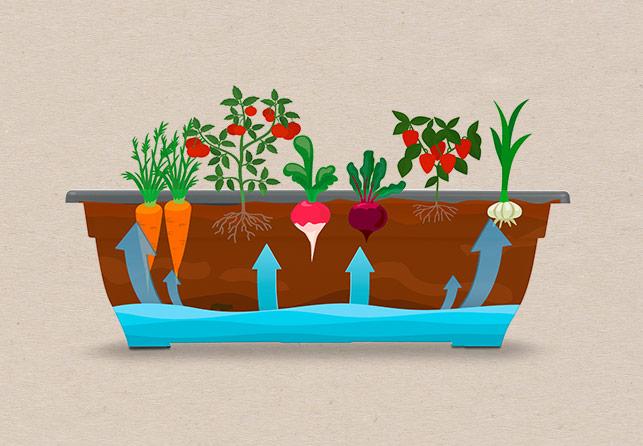 Mbajtëse vertikale me 5 vazo Grow